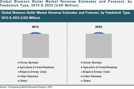 Global & U.K. Biomass Boiler Market: Government Funding to Play Important Role in Fueling Installation. | Market Reports | Scoop.it