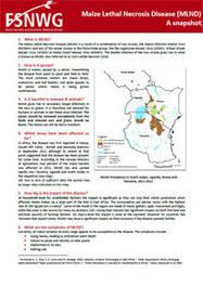 Maize lethal necrosis disease: an emerging disease in Eastern Africa | Effectors and Plant Immunity | Scoop.it