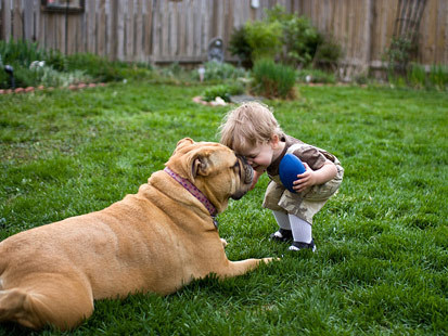 Dogs, Cats May Make Kids Healthier | B | Scoop.it