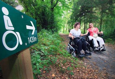 En fauteuil dans les bois | Site de Rennes, Ville et Métropole | Mes articles | Scoop.it