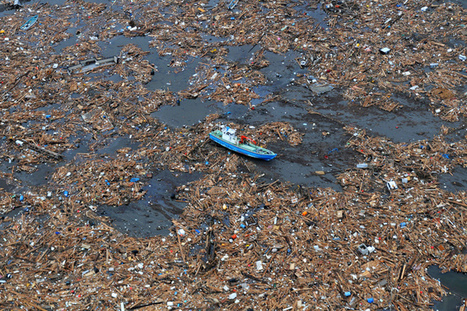 The ocean is not broken, but consumer behaviour is | Ocean News | Scoop.it