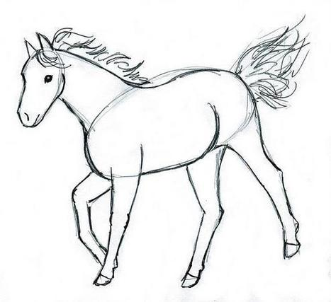 Horse Drawing   Horse   Scoop.it