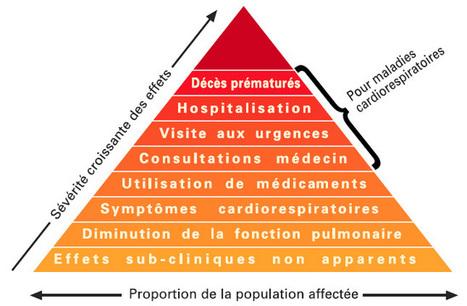 La pollution urbaine en Afrique : entre déni et problèmes de santé publique | La pollution urbaine en AFRIQUE | Scoop.it