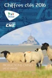 Chiffres-clés Ovins Lait et Viande 2016   SCIENCES DE L'ANIMAL   Scoop.it