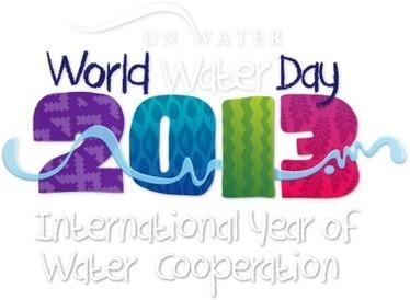 2013 - UN International Year of Water Cooperation: Quiz | GEP Water resources | Scoop.it