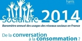De la conversation à la consommation : les usages des réseaux sociaux changent | Création d'un nouveau concept de site de location de voitures | Scoop.it