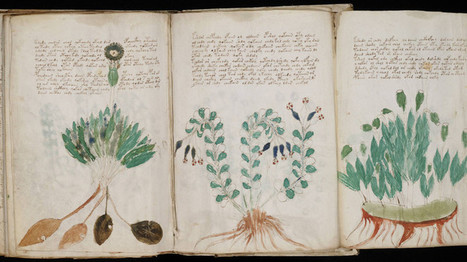 Exact Reproductions Approved of Mysterious 'Unbreakable' Coded Voynich Manuscript (PHOTOS) | Natural History, Environment, Science, & Technology | Scoop.it