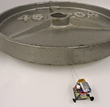 These Micro Robots Can Haul 2,000 Times Their Weight | leapmind | Scoop.it