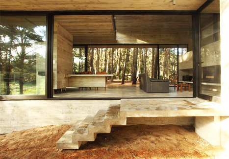 Concrete treehouse stunner in Brazil | sustainable architecture, Green Cities | Scoop.it