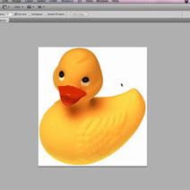 Photoshop: Seçimleri geçici olarak gizlemek   Photoshop Dersleri   Scoop.it