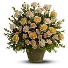 Rose Remembrance | Flower Shop Toronto | Scoop.it