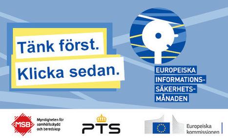 Informationssäkerhet - Dinsakerhet | Folkbildning på nätet | Scoop.it