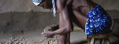 La Malnutrition, ou la Faim Silencieuse   Equitalgue : Spiruline solidaire et équitable   Scoop.it