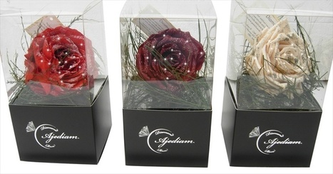 Diamond roses Gifts, info gift ideas for engagement wedding anniversary Buy wholesale | CelebritizeYou | Scoop.it
