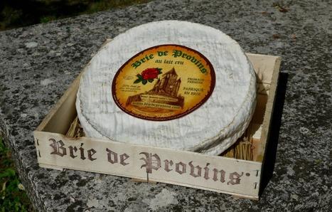 Quand un Rothschild fait dans le fromage : le Brie de Provins ® | The Voice of Cheese | Scoop.it