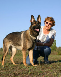 Dog trainer and dog day care in Mt Pleasant SC - The Village Groomer   The Village Groomer   Scoop.it