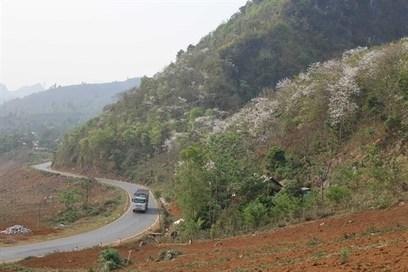 Le tourisme durable doit être la priorité - Vietnam+   Tourisme équitable, solidaire et responsable   Scoop.it