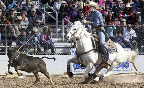 Tucson Rodeo: Parsons rebuilds confidence | Arizona Daily Star | CALS in the News | Scoop.it