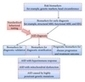 Current Progress and Challenges in the Search for Autism Biomarkers | Mental health | Scoop.it
