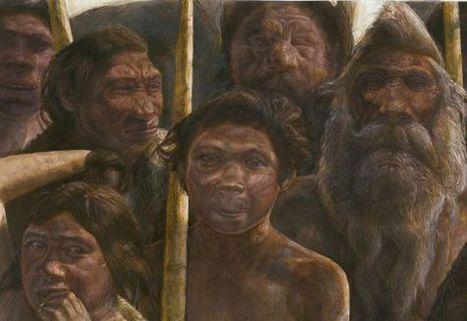 El ADN más antiguo está en Atapuerca | Vida_en_evolución | Scoop.it