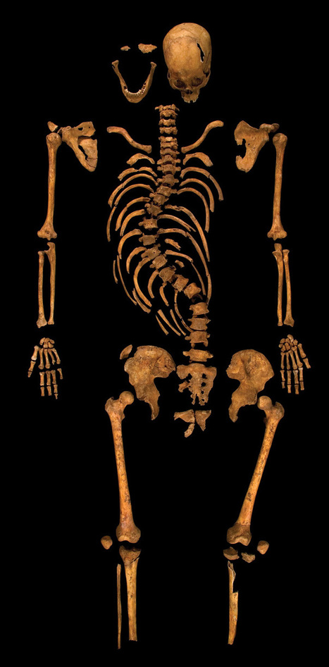 Richard III's Last Act - Archaeology Magazine | Social studies | Scoop.it
