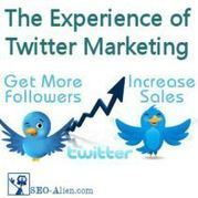 The Experience of Twitter Marketing | Social Media Effectiveness | Scoop.it