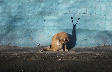 Street Art by Alexey Menschikov | Technology | Scoop.it