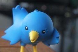 Twitter : quels usages pédagogiques ? - Educavox | news eco commerciales et pédagogiques en lp | Scoop.it