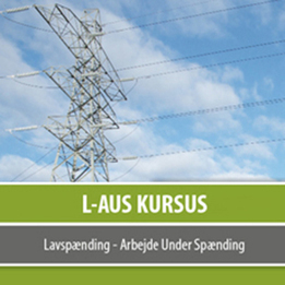 L-AUS kursus e-learning | e-learning | Scoop.it