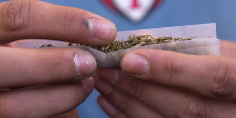 Official: Uruguay Will Sell Legal Marijuana For $1 Per Gram | Crap You Should Read | Scoop.it