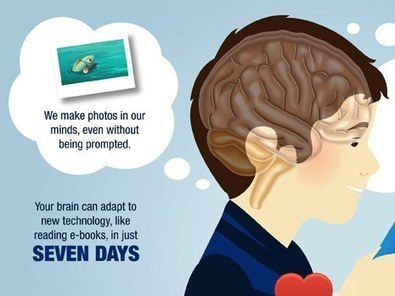 Your Brain on Books: 10 Things That Happen to Our Minds When We Read - OEDB.org | School libraries for information literacy and learning! | Scoop.it