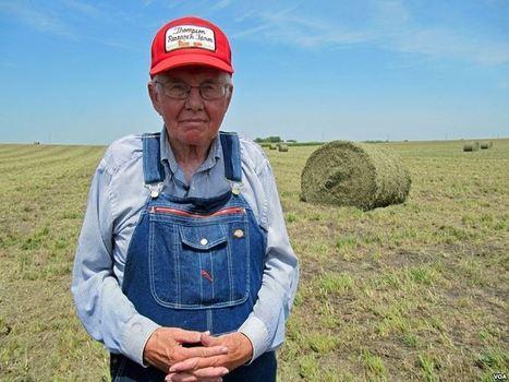 Old Ways Help Iowa Farmer Beat Drought | Animal Sciences | Scoop.it