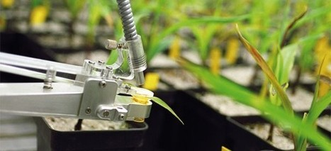 Switzerland is the most innovative industrial nation | Technology in Business Today | Scoop.it