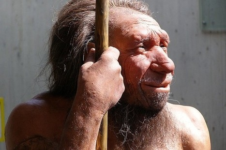 Humans And Neanderthals Mated More Recently Than Thought | Aux origines | Scoop.it