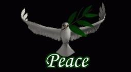 """Establishing lasting peace  is the work of education"" | Montessori education | Scoop.it"