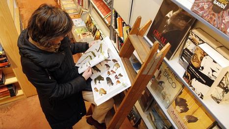La selección de lecturas, clave del trabajo bibliotecario | Temas de Bibliotecas | Scoop.it