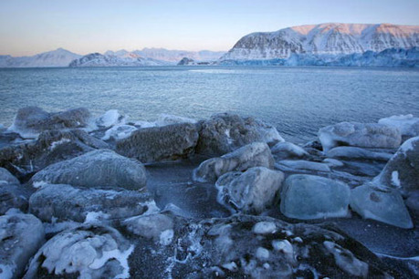 Survey Tracks Scientists' Growing Climate Concern   the climate change conversation   Scoop.it