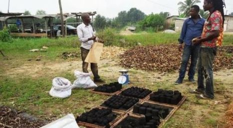 Recyclage : Au Cameroun, il y a de l'or dans les ordures - Cameroon News - News in Cameroon - Live News - Daily News Cameroon - Live News in Cameroon | Economie circulaire | Scoop.it