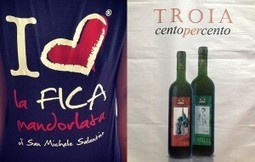 "Lezioni di marketing: l'ardua scelta fra ""Troia 100%"" e ""I love la Fica Mandorlata"" 