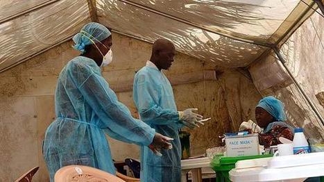 Virus del Ébola deja 729 muertos en África Occidental | La esducacion sexual en la vida humana | Scoop.it