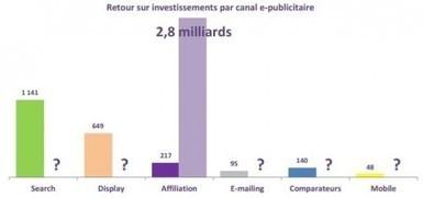 Performance de l'affiliation en 2012 | Publicite & Marketing | La performance : des vendeurs, des équipes commerciales | Scoop.it