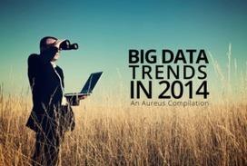 [Infographic]: Big Data Trends In 2014 - Tools Journal | Big Data | Scoop.it