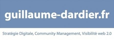 Newsletter Guillaume Dardier | Stratégie Digitale et entreprises | Scoop.it