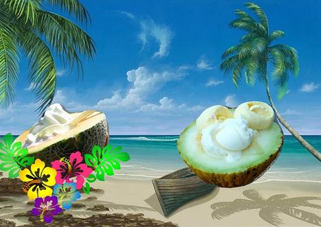 Recette de dessert minute au melon, crème glacée à la vanille, chantilly | Desserts street food | Scoop.it