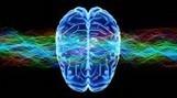 Il supercomputer che simula le onde cerebrali - Le Scienze   Neuroscienze   Scoop.it