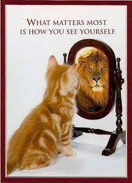 Not Confident Enough? Reprogram Your Confidence Level | Positive futures | Scoop.it