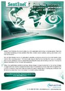 Sentinel, Website Performance Monitoring Tool | Reflective Solutions Ltd | Scoop.it