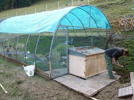 Protéger vos animaux dans leur enclos à l'aide d'une bâche | bricolage-professionnels | Scoop.it