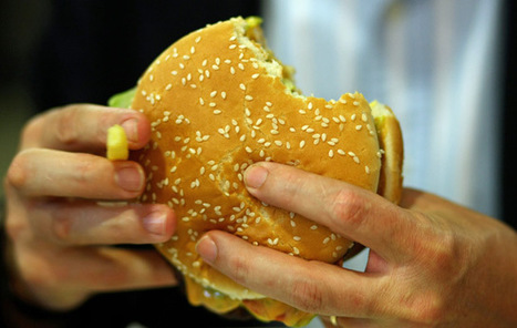 Burger King Gets Caught Up in U.K.'s Horsemeat Scandal | Holistic Lifestyle | Scoop.it