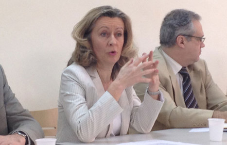 """Conway : """"A Bamako, la menace est invisible"""" (interview) - leJDD.fr   Français à l'étranger : des élus, un ministère   Scoop.it"""